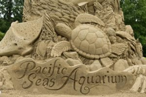 The Baja Beach sand sculpture at the Zoo.