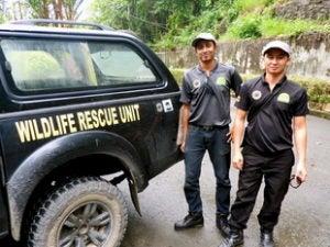 Indonesian wildlife rescue.